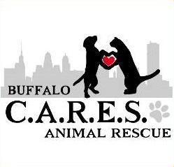 BuffaloCares