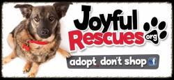 Joyful Rescue