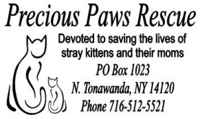 Precios Paws Rescue