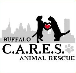 Buffalo Cares